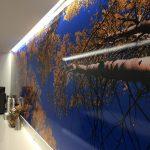 Custom Vinyl Wall Murals IMG 4744 150x150